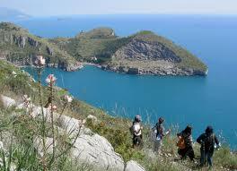 Un gruppo di giovani provenienti da 5 Paesi europei impegnati nel monitoraggio dell'Area marina protetta di Punta Campanella