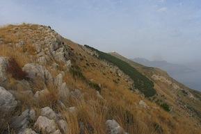 Primo incendio di stagione, in fiamme il monte San Costanzo