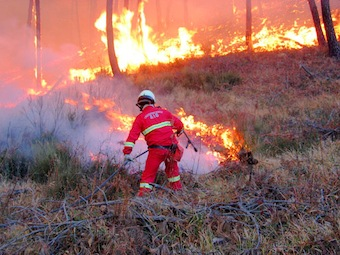 Scatta l'ordinanza per la prevenzione degli incendi: stop anche alle sigarette nei boschi
