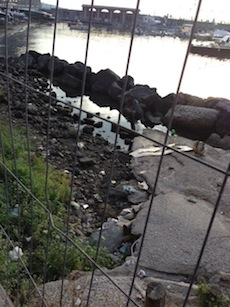 Porto nuovo a Piano di Sorrento: all'ingresso della banchina erbacce e degrado
