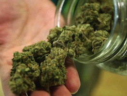 Fermati con 200 grammi di marijuana diretta in costiera