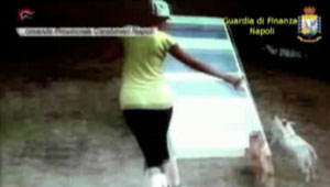 """""""Falsi ciechi"""" 21 arresti nel napoletano, l'inchiesta arriva in penisola sorrentina"""
