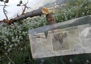 """Bracconieri spezzano gli alberi piantati dal Wwf e lasciano un messaggio: """"La guerra è iniziata"""""""