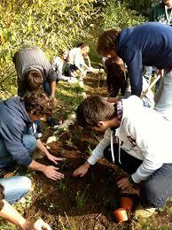 Gli studenti alla scoperta delle pratiche agricole grazie all'orto didattico
