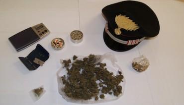 Marijuana per uso terapeutico: Pena sospesa per il 24enne di Meta arrestato sabato scorso