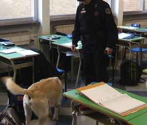 Controlli antidroga al Nautico: carabinieri in classe con i cani
