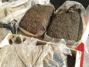 Oltre 60 kg di hashish ritrovati nel mare di Recanati