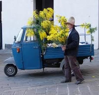 venditore ambulante di fiori