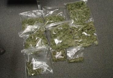 Bombe, marijuana e pensionati con pianta di cannabis, blitz a Gragnano – video –