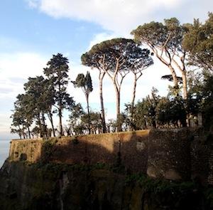 Villa Fondi, piante malate da rimuovere per la sicurezza dei visitatori