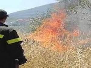 Incendio nella zona di Massa Lubrense, intervento dei pompieri