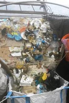 Spazzatura in mare alla Baia di Recommone: nel weekend raccolti 150 kg di rifiuti