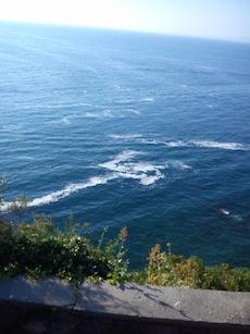 """""""Chiazze di schiuma"""" il mare della penisola non è più lo stesso"""