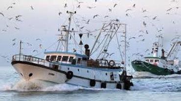 Nuove opportunità per gli operatori della pesca, incontro a Massa Lubrense