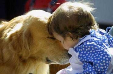 """Avvicinare i bambini al mondo animale: è lo scopo del progetto """"Amici Pet"""""""