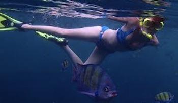 Snorkeling a caccia dei segreti della Baia di Ieranto