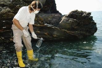 Alga tossica: Stop alla raccolta e consumo dei frutti di mare