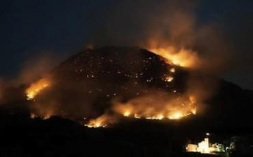 Brucia l'isola verde: fiamme e terrore nella notte di Ischia