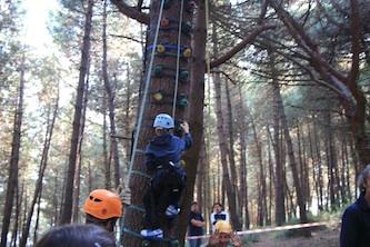 Fine settimana all'insegna del tree climbing a Le Tore