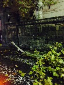 Bomba d'acqua nella notte di Sorrento: cadono rami e strade allagate