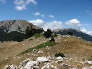 Ritrovati gli scout di Sorrento dispersi sul Pollino