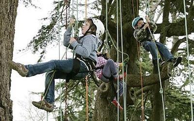 Arrampicarsi sugli alberi, a Le Tore arriva il Tree Climbing