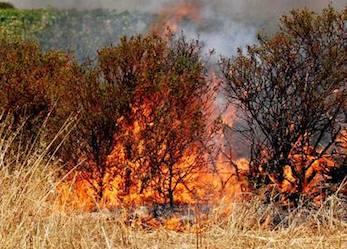 Prevenzione incendi, a Sorrento stop ai fuochi