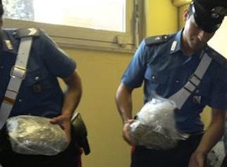 Operazione nel weekend: marijuana nascosta in un casolare abbandonato