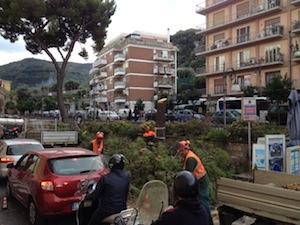 Alberi tagliati a largo Parsano Vecchio: traffico in tilt in tutta Sorrento