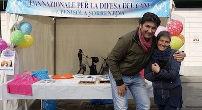 Anagrafe canina, in piazza Veniero l'installazione gratuita dei microchip