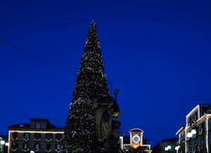 """Sorrento """"s'illumina d'inverno"""": ecco l'albero di Natale 2014"""