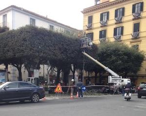 piazza-tasso-alberi-sorrentopress