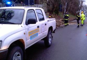 Vento forte, interventi della protezione civile e dei vigili urbani