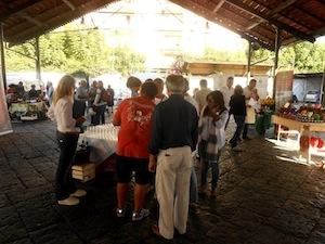 Si celebra oggi lo Slow Food Day, appuntamenti in costiera ed a Capri