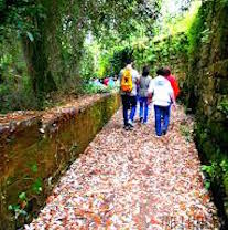 Rivive il percorso naturalistico di via Ponte di Mortora
