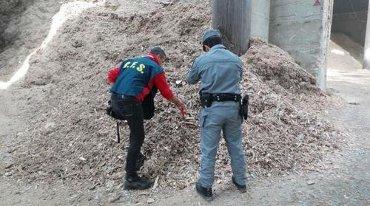 Pellet contaminato, sequestri in Campania
