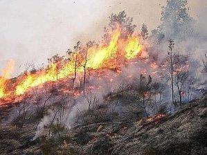 Indagini a tappeto sugli incendi in penisola