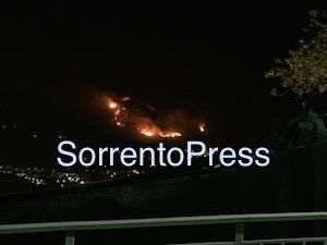 """Incendi, il Wwf: """"Stop alla caccia"""""""