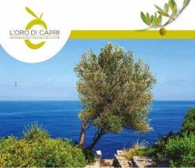 Nasce l'Associazione per la tutela dell'ulivo di Capri