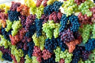 Uva e vino al Mercato della Terra Slow Food di Piano di Sorrento