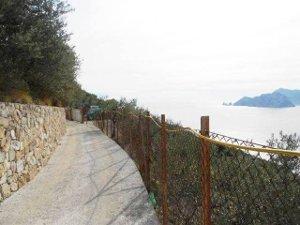 Ambientalisti contro Comune per il restyling della Via Minervia