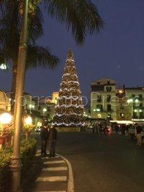 Anteprima del video dell'albero di Natale di piazza Tasso illuminato a ritmo di musica