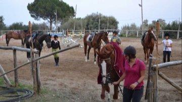 Niente licenza, stop alla scuola di equitazione