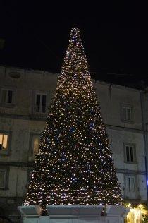 albero-natale-piazza-cota