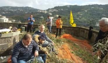 Raccolta delle olive con i ragazzi diversamente abili