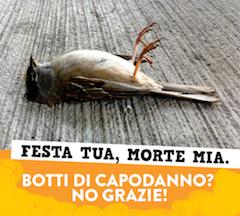 uccello-ucciso-botti
