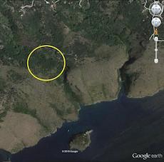 area-disboscata-torca