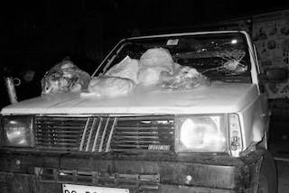 Vandali distruggono l'auto del presidente del Wwf d'Esposito