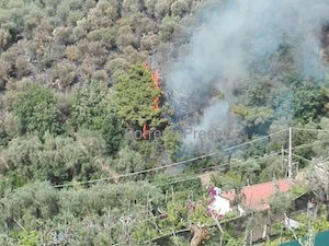 Domato l'incendio di Marina di Puolo – video –