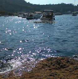 Affonda barca con neonata a bordo, tutti salvi gli occupanti